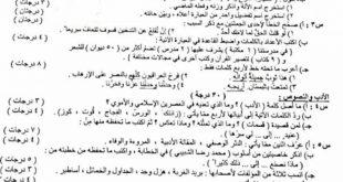 اسئلة العربي الثالث المتوسط 2019